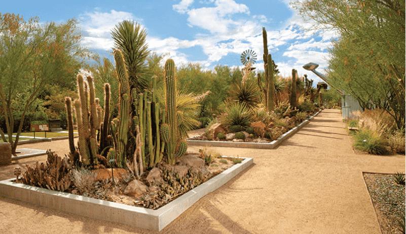 Parque Springs Preserve em Las Vegas