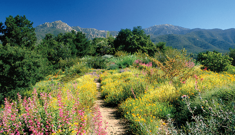 Jardim Botânico em Santa Bárbara na Califórnia
