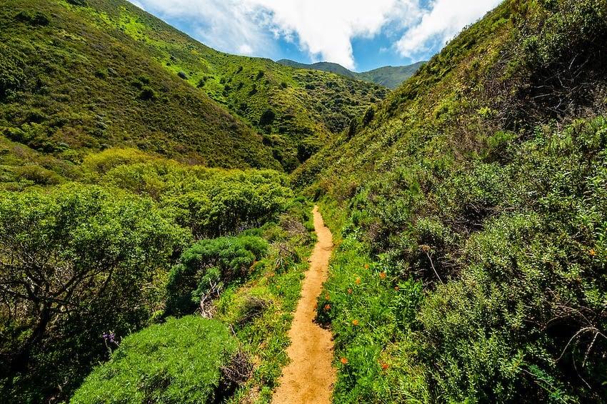 O que tem no Garrapata State Park em Carmel Monterey na Califórnia