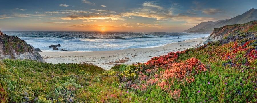 Garrapata State Park em Carmel Monterey na Califórnia