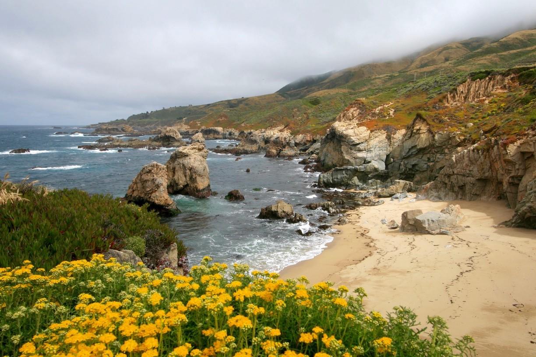 Trilhas no Garrapata State Park em Carmel Monterey na Califórnia