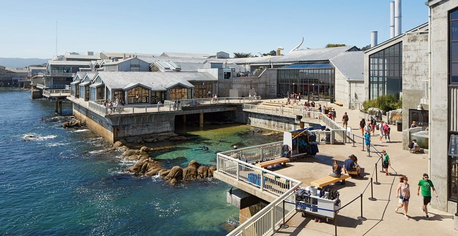 Como chegar no Monterey Bay Aquarium na Califórnia